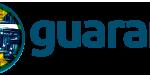 guarany coin image
